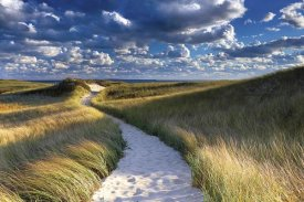 Katherine Gendreau - Philbin Beach Path