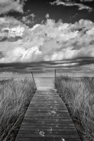 Katherine Gendreau - Oak Bluffs Beach Path