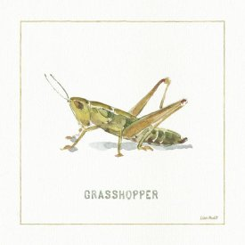 Lisa Audit - My Greenhouse Grasshopper