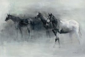 Marilyn Hageman - In the Mist