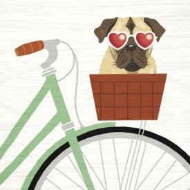 Michael Mullan - Beach Bums Pug Bicycle I