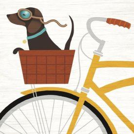 Michael Mullan - Beach Bums Dachshund Bicycle I