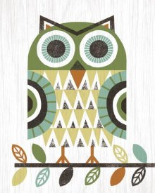 Michael Mullan - Folk Lodge Owl Earth