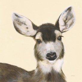 Patsy Ducklow - Whitetailed Deer I