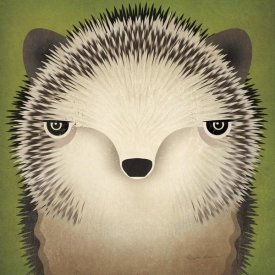 Ryan Fowler - Baby Hedgehog