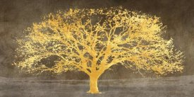Alessio Aprile - Shimmering Tree Ash