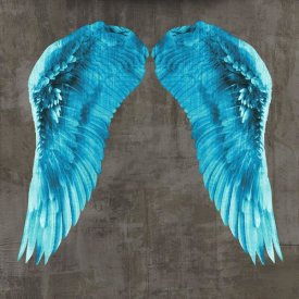 Joannoo - Angel Wings V