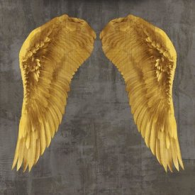Joannoo - Angel Wings I