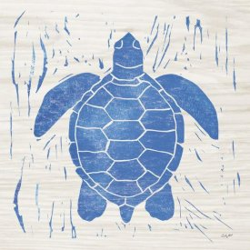 Courtney Prahl - Sea Creature Turtle Blue