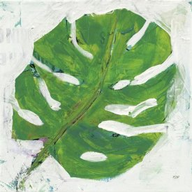 Kellie Day - Single Leaf Play on White