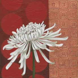 Kathrine Lovell - Morning Chrysanthemum II