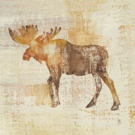 Studio Mousseau - Moose Study