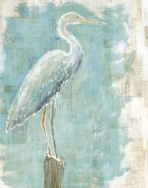 Sue Schlabach - Coastal Egret I working