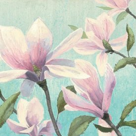 James Wiens - Southern Blossoms I Square