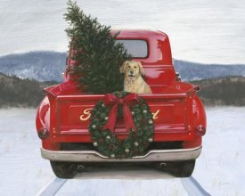 James Wiens - Christmas in the Heartland IV Ford