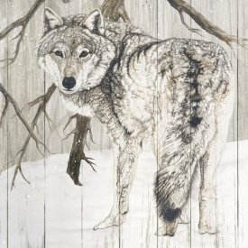 Jacquie Vaux - Wolf in Woods on Barn Board