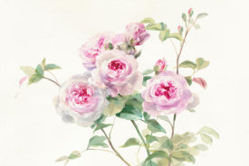 Danhui Nai - Sweet Roses on White Green