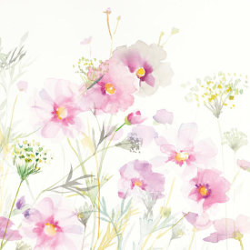 Danhui Nai - Queen Annes Lace and Cosmos on White II