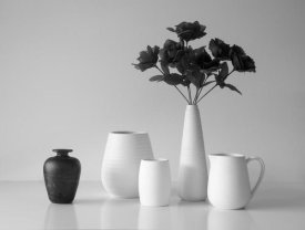 Jacqueline Hammer - Still Life In Black And White