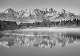 Frank Krahmer - Allgaeu Alps and Hopfensee lake, Bavaria, Germany (BW)