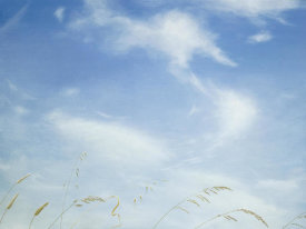 Emmeline Craig - Big Sky-Summer Glee