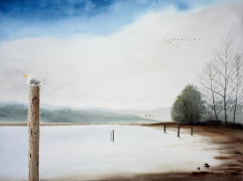 Emmeline Craig - Bolinas Lagoon with Seagull