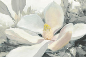 Julia Purinton - Majestic Magnolia Green Gray Crop