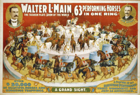 Hollywood Photo Archive - 63 Performing Horses - 1899