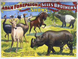 Hollywood Photo Archive - Adam Forepaugh & Sells Brothers Enormous Shows Combined - Wondrous Sumatra, African And South-American Wild Beasts And Birds