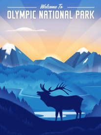 Martin Wickstrom - Olympic National Park - Elk