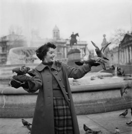 Hollywood Photo Archive - Elizabeth Taylor with pigeons