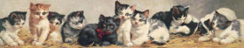 Unknown 19th Century American Lithographer - Yard of Cats, 1893 - Cropped