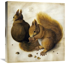 Albrecht Durer - Two Squirrels, One Eating a Hazelnut