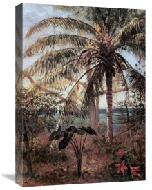 Albert Bierstadt - Palm Tree, Nassau