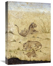 Mughal - A Family of Lions