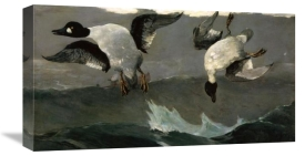 Winslow Homer - Right & Left