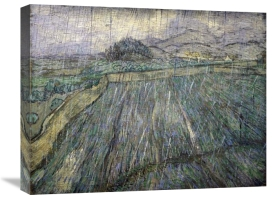 Vincent Van Gogh - The Storm