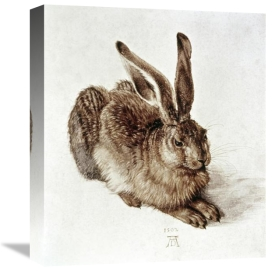 Albrecht Durer - The Young Hare