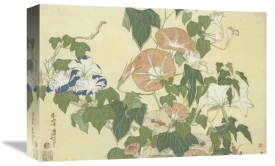 Hokusai - Convolvulus And Tree Frog