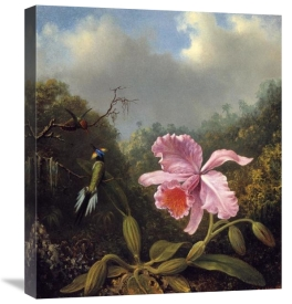 Martin Johnson Heade - Fighting Hummingbirds With Pink Orchid