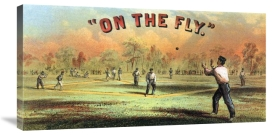 Vintage Sports - On the fly