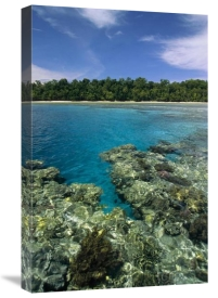 Konrad Wothe - Coral lagoon and palm lined beach, Rani Island, Indonesia