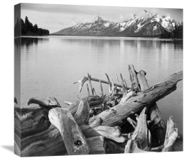 Ansel Adams - Driftwood on shore of Jackson Lake, with Teton Range in background, Grand Teton National Park, Wyoming, 1941