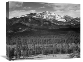 Ansel Adams - Trees in foreground, snow covered mountain in background, in Rocky Mountain National Park, Colorado, ca. 1941-1942