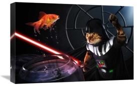Christophe Kiciak - Darth Sushi
