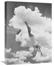 Anonymous - Woman jumping from springboard