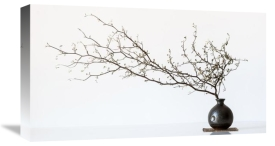 Prbimages - Vase And Branch