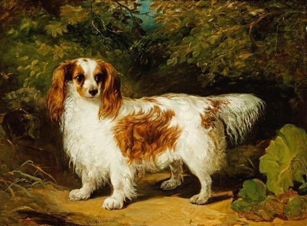 H Willis A Blenheim Cavalier King Charles Spaniel Art