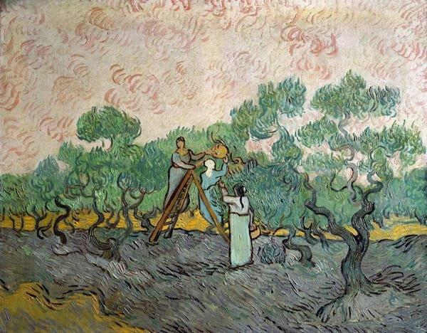 Vincent Van Gogh Women Picking Olives Art Print
