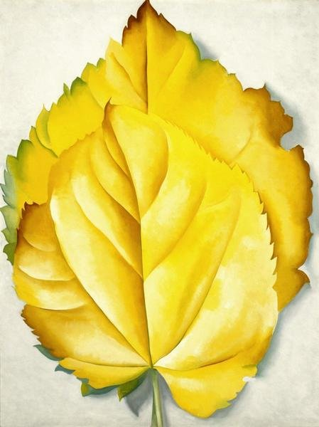 Georgia O Keeffe 2 Yellow Leaves Yellow Leaves 1928